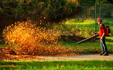 backpack leaf blower buying guide