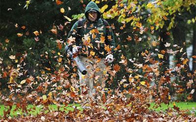 backpack leaf blower reviews