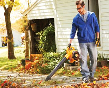 gas leaf blower buying guide
